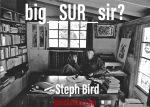 big_SUR_sir?