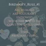 Birdanity_Rule_#1